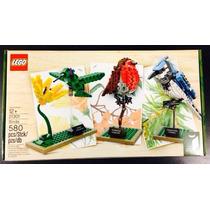 Lego Exclusivo Ideas 21301 Birds