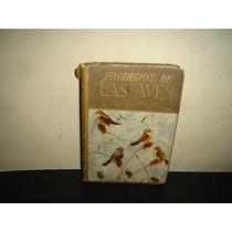 Prodigios De Las Aves - J. O. Espasandin - 1942