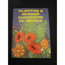 Plantas Yerbas Curativas De México