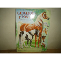 Caballos Y Ponys En La Punta De Sus Dedos