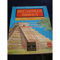 Mi Castillo Básico 5, Ismael Vidales Delgado