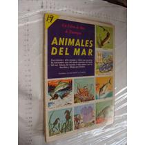 Libro Animales Del Mar , Un Libro De Oro De Estampas , Edit