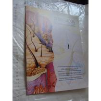 Libro Dermatologia , Una Interpretacion Medico Artistica , 1