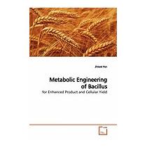 Metabolic Engineering Of Bacillus, Zhiwei Pan