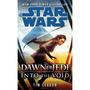 Star Wars: El Amanecer De Los Jedi - Into The Void