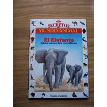 Secretos Del Mundo Animal-el Elefante-ilust-dagostini-op4