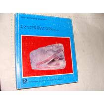 Libro Las Serpientes En El Arte Mexica, Nelly Gutierrez Sola