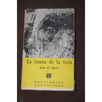 La Trama De La Vida , John H. Storer , Breviario