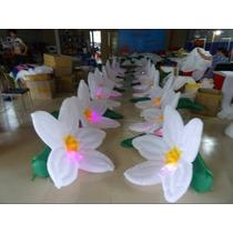 5 Flores Inflables 5m Luz Led Decoración Bodas Bautizo Boda