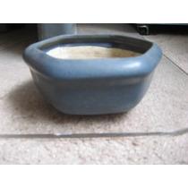 Maceta De Cerámica Para Bonsai