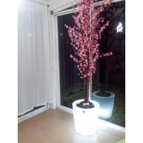 Planta Durazno En Maceta De Luz