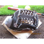 Louisville Slugger Omaha Flare Series / Guante Rh 11.5