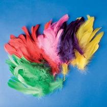 Plumas Artesanía - Playbox Varios Colores 200 Piezas De Arte