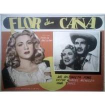 Maria Antonieta Pons En: Flor De Caña