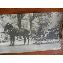 Antigua Fotografía De Carruaje A Caballos