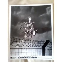 Foto Pollitos En Fuga (chicken Run)
