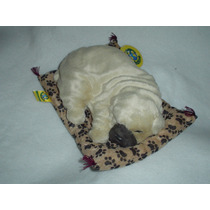 Sharpei De Peluche Casi Real Y Ronca !!! Unico Y Exclusivo