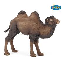 Camel Altura - Bactriano Salvaje Animal Fantasía Acción