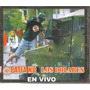 Apatia No / Los Dolares - En Vivo ( Hardcore Punk ) Cd Rock