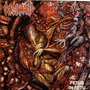 Goreinhaled - Fetus In Fetu - Cd Brutal Death Metal España