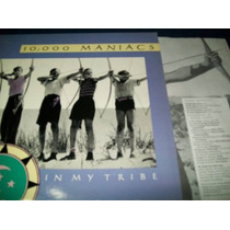 Natalie Merchant 10,000 Maniacs - In My Tribe Lp Vinil Indie