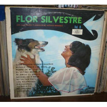 Flor Silvestre Vol 8 Lp Musart Sello 1968