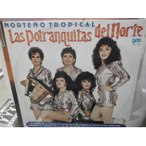 Las Potranquitas Del Norte Norteño Tropical Lp