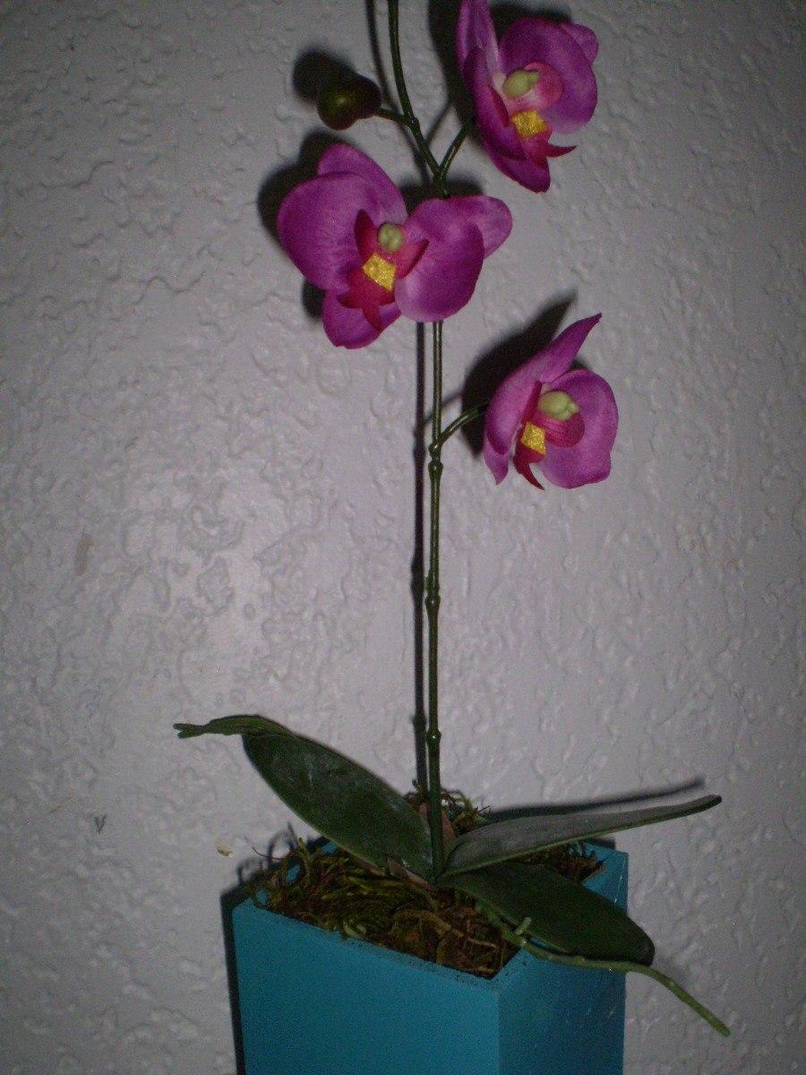 Orquideas en flor en maceta mdn en mercadolibre - Macetas para orquideas ...