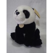 Panda Miyoni Aurora Calidad Nuevo Fotos Reales