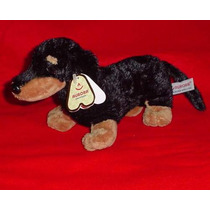 Perro Salchicha Cachorro -aurora-