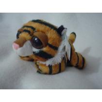 Tigre Dreamy Eyes Echado Aurora Original Y Nuevo Foto Real