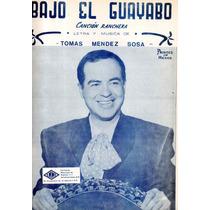 Bajo El Guayabo Tomás Mendez Sosa
