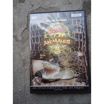 Dvd Animales El Jabali El Oso El Cocodrilo Bbc