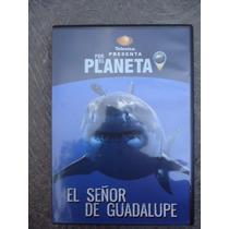 Dvd Por El Planeta Tiburon Blanco Televisa
