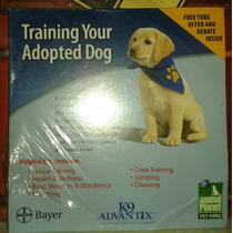 Dvd Entrenando A Un Perro Adoptado De Animal Planet