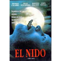 Terror Dvd De La Pelicula: El Nido 95 Minutos