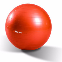 Pelota Pvc Gym Pilates Yoga 65cm Calidad Incluye Bomba 1821
