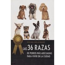 Las 36 Razas De Perros Más Adecuadas Para Vivir En La Ciudad