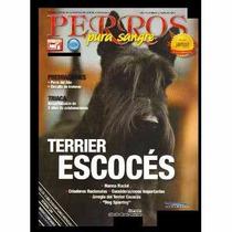 Revista De Perros Pura Sangre Terrier Escocés Febrero 2014