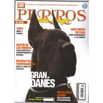 Revista De Perros Pura Sangre El Gran Danés De Octubre 2008