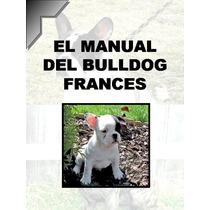 Manual Del Bulldog Frances + Regalos Conocelo ¡¡ Mma