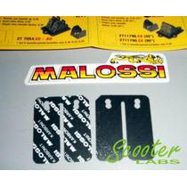 Petalos Reeds Malossi Fibra De Carbono Gilera Runner 180 2t