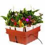 Sistema Hidropónico Plantas Equipo Hidroponia Cultivo Pm0