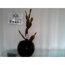 Arreglo Con Cactus Artificial