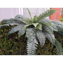 Planta Helecho Artificial 1.50 Largo Jardin Y Decora Vjr