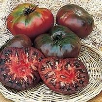 Jitomate Cherokee Purple 10 Semillas Flores Planta Sdqro