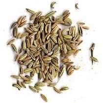 1 Lb Semillas De Hinojo - Foeniculum Vulgare Codigo 208-a
