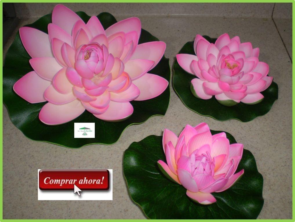 Plantas Y Flores Para Decorar Oficinas Idd  $ 22800 en MercadoLibre