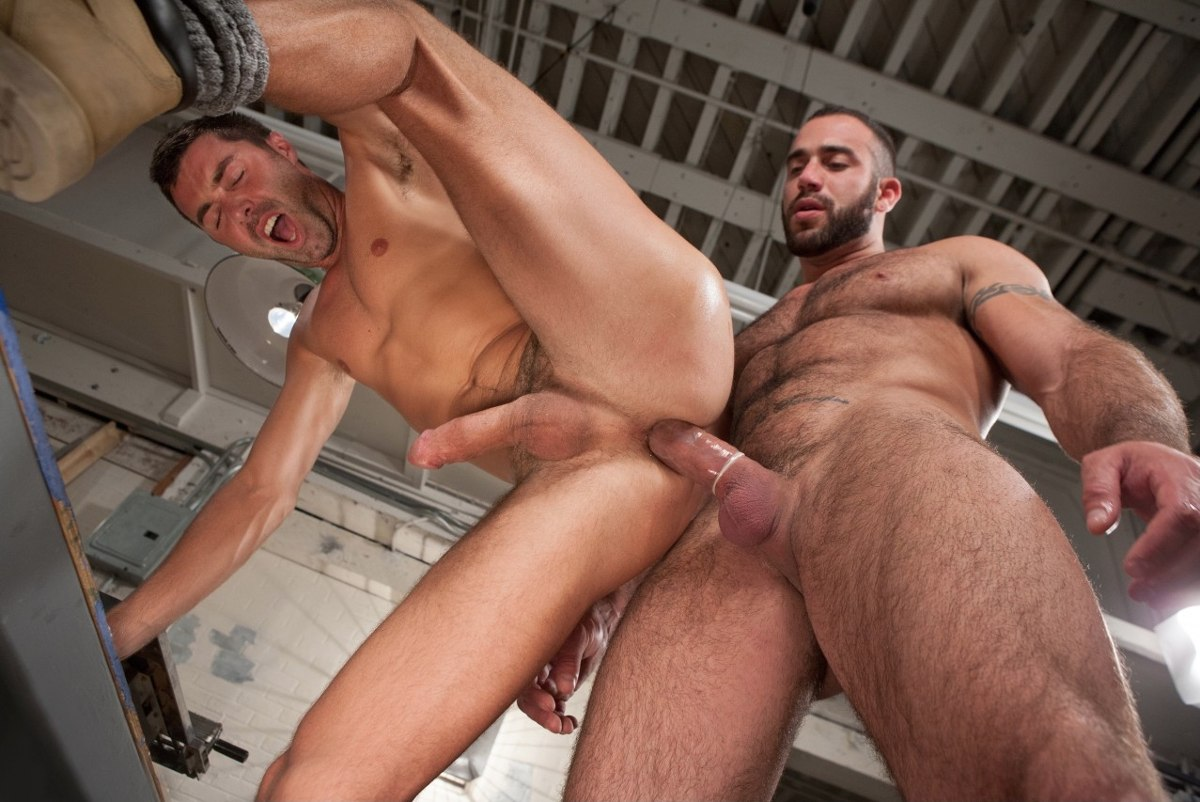 amy reid porno gay foto porno