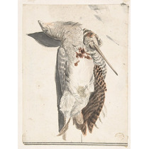 Dos Muerto Aves (a Codorniz Y La Largo-belaked Pájaro).